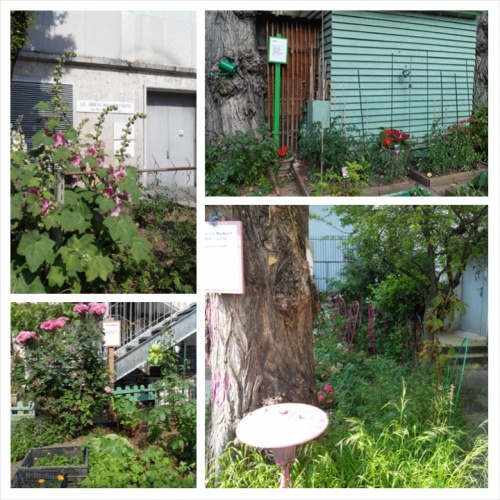 rue de la manutention, le jardin aux habitants du palais de Tokyo